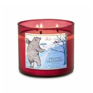 Bath and Body Works Winter Edition Candle